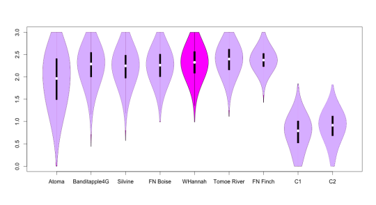 Violin plot comparing William Hannah paper with previously tested paper