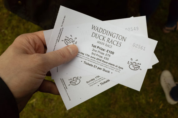 Waddington Duck Race
